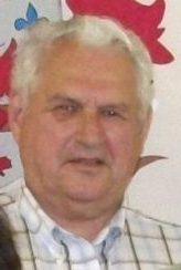 Michel Nadeau, vice-président